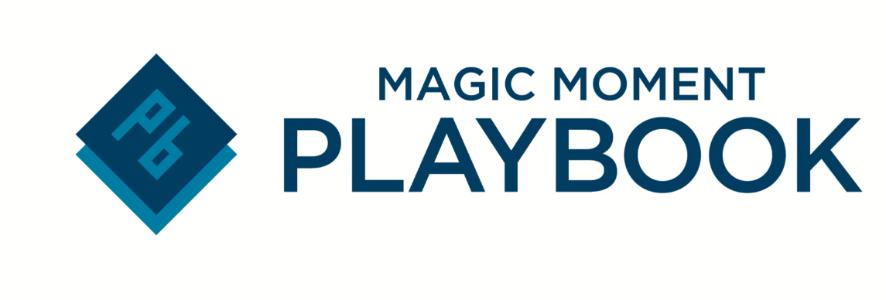 Playbook Logo Small